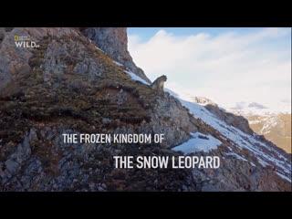 Холодное королевство снежного барса (2020) HD 1080