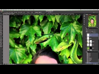 Videotutorial Speed Process with Photoshop: Lady in Green \\з