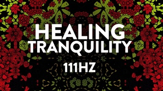 Healing Tranquility ✧ 111Hz ✧ Beta Endorphins & Cell Regeneration ✧ Ambient Meditation Music