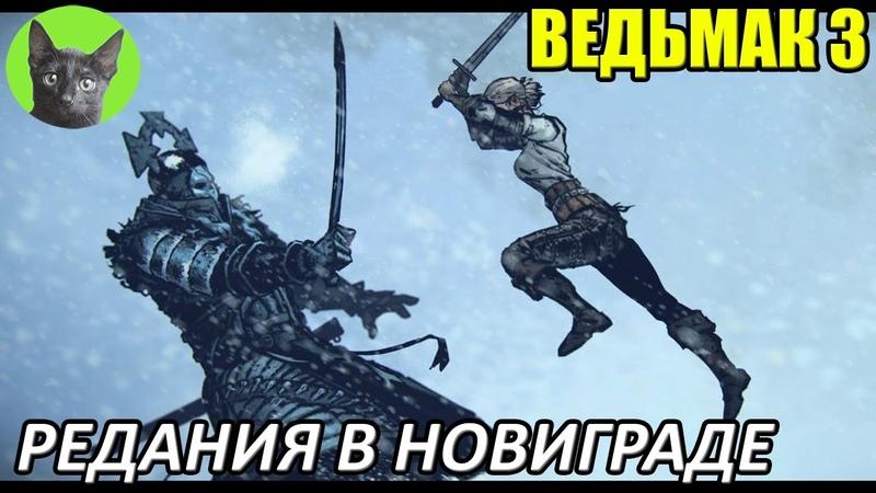 Ведьмак 3 Интересности Редания в Новиграде