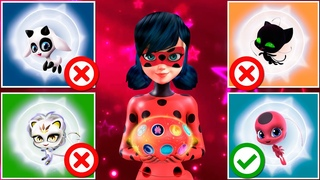 Wrong Heads and kwami 🐞 All Ladybug transformation Miraculous