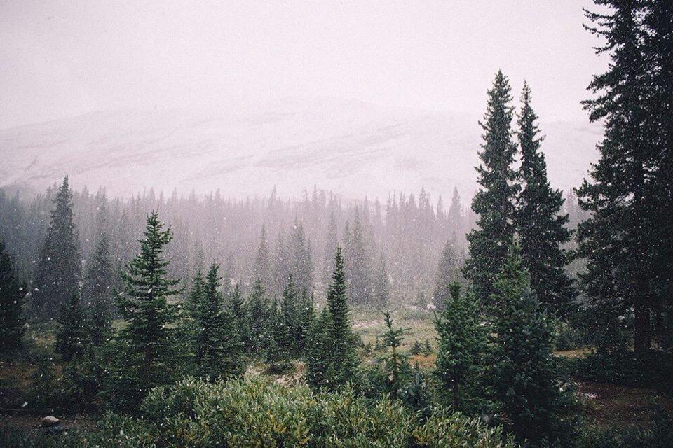 Роскошные пейзажи Норвегии - Страница 37 P5DaRTwGdXM