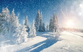 Тельцы,пусть в это холодное время года вас будет греть любовь близких и родных!