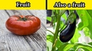 Everyday Foods That Aren't What We Think They Are