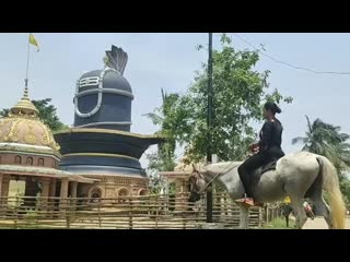 Horse riding by indian woman_hd.mp4