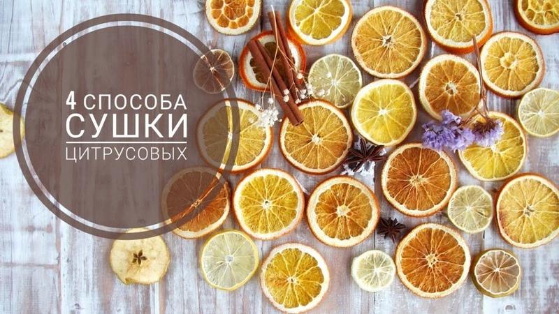 Как засушить апельсин для декора и поделок Сравнение 4х способов сушки цитрусовых
