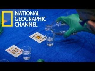 КАРТОЧНЫЙ ФОКУСНИК. Три Карты Монте / Самый опасный карточный трюк в мире (4 из 4) / NAT GEO