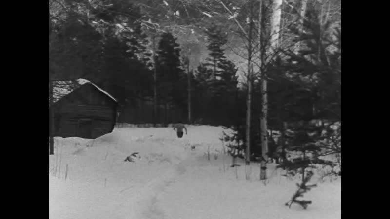 [44] Eight deadly shots (Kahdeksan surmanluotia), Mikko Niskanen, 1972