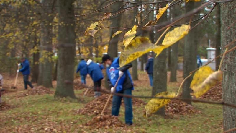 Активисты Единой России в Великих Луках провели традиционный субботник