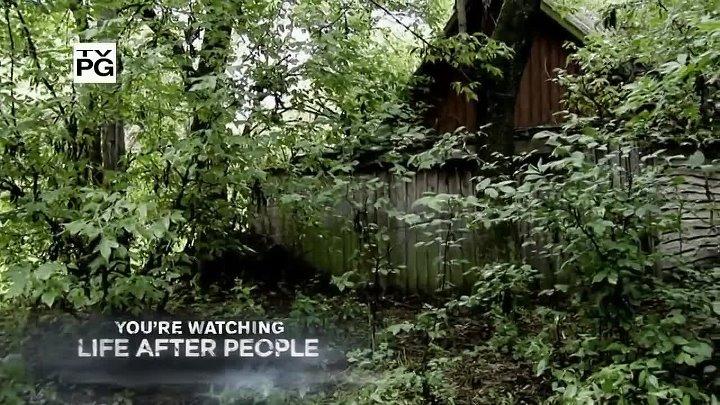 Будущее планеты Жизнь после людей Life After People США 2008