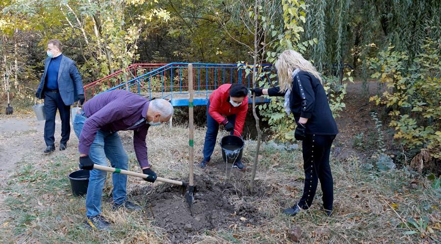 Зеленый наряд Таганрога пополнили более тысячи молодых деревьев