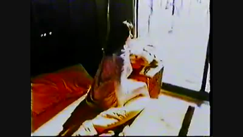 Боки Итальянский жеребец Bocky Ein Mann steckt einen weg Italian Stallion UNCUT German version  1970 VHSRip Перевод SPbST