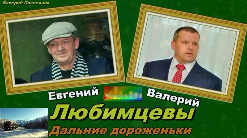 Евгений и Валерий Любимцевы Дальние дороженьки