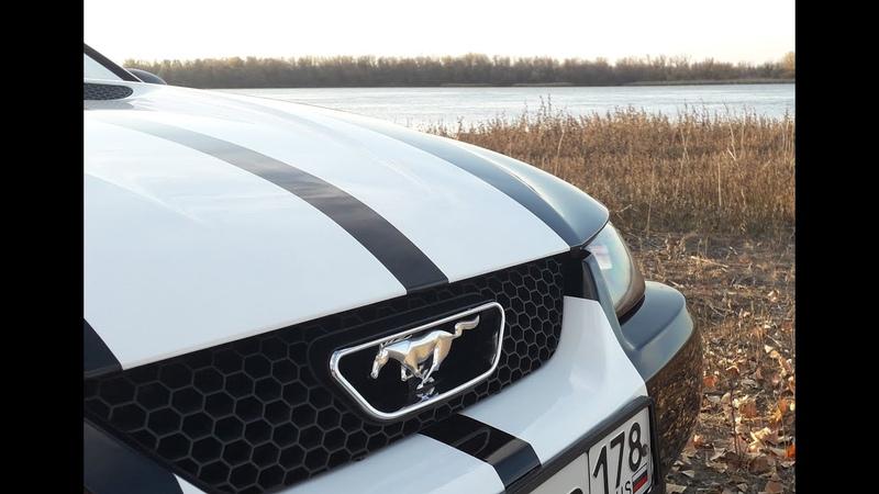 Амортизаторы багажника Kia Picanto на Ford Mustang SN95