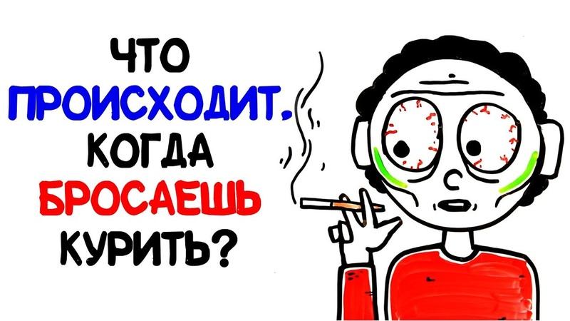 Что происходит когда бросаешь курить AsapSCIENCE