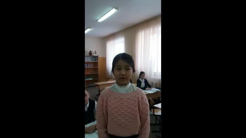 7 сынып оқушысы Сейлхан Аружан