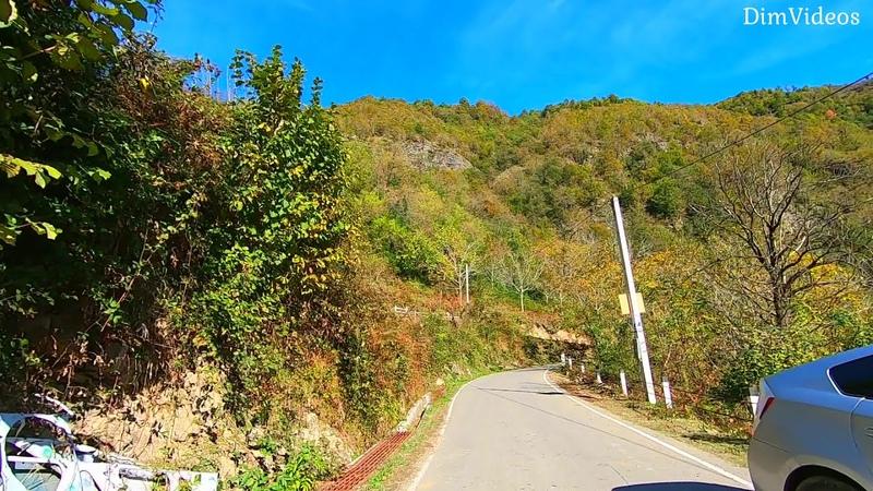 Езда по горной дороге осенью в ущелье Мачахела Аджария Грузия Stoto Late Night