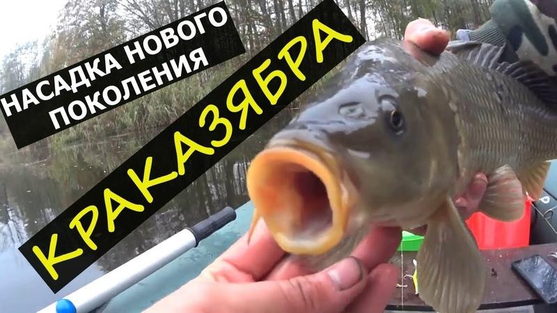 Рыболовная Насадка КАРАЗЯБРА Насадка на КАРАСЯ и КАРПА