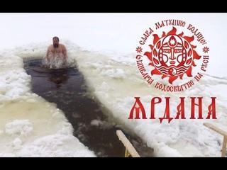 Яр Дана 7528 Лисичанск