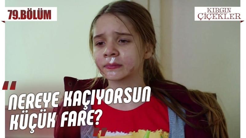 Büşra Kemal'in elinden kurtuluyor mu Kırgın Çiçekler 79 Bölüm