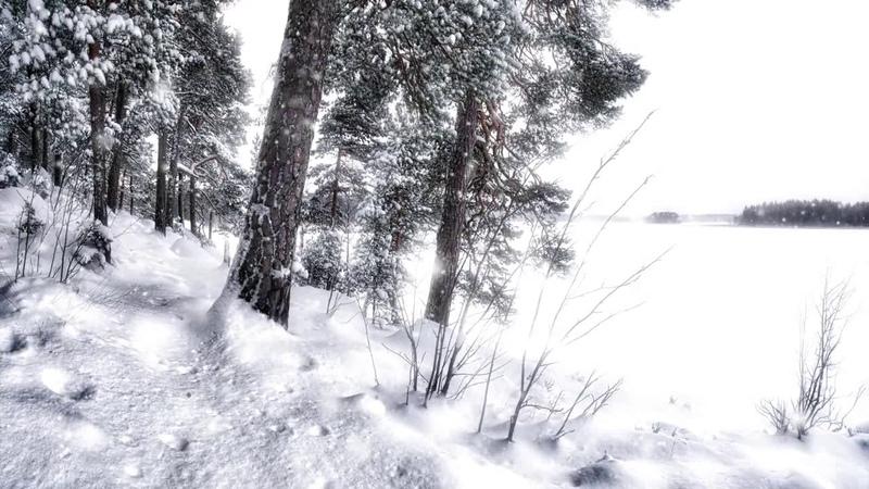 Andrzej Piaseczny i Seweryn Krajewski - Kochajmy się zimą