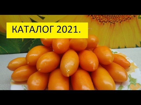 Каталог семян томатов 2021 года Как заказать семена