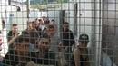 Migrant Influx Brings Humanitarian Crisis To Croatia-Bosnia Border