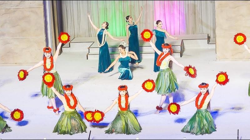 Hula Girls Grand Polynesian Show Spa Resort Hawaiians Japan