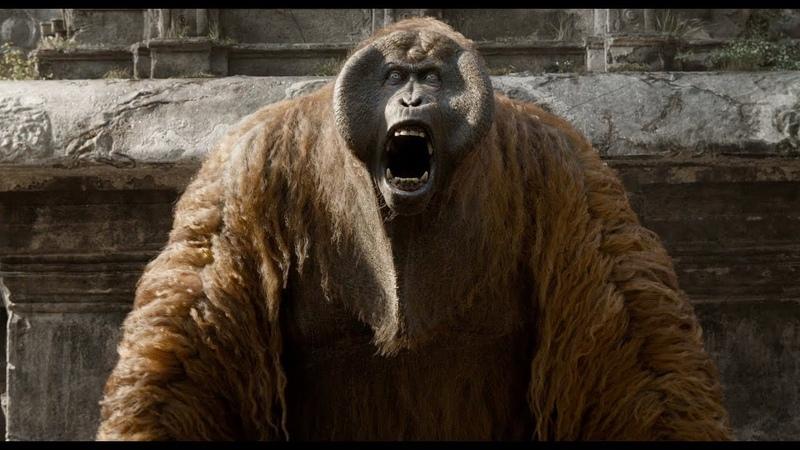 А ну стоять Маугли Книга джунглей отрывок из фильма