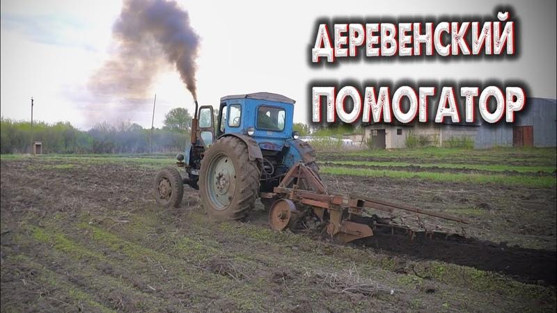 ДЕРЕВЕНСКИЙ ПОМОЩНИК трактор Т40АМ ВСПАШКА ОГОРОДА НА Т40 трактор для дома