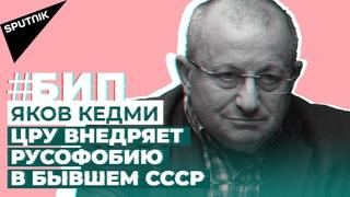 #БИП Кедми о крахе США в Афганистане, вирусе русофобии и прав ли Лукашенко