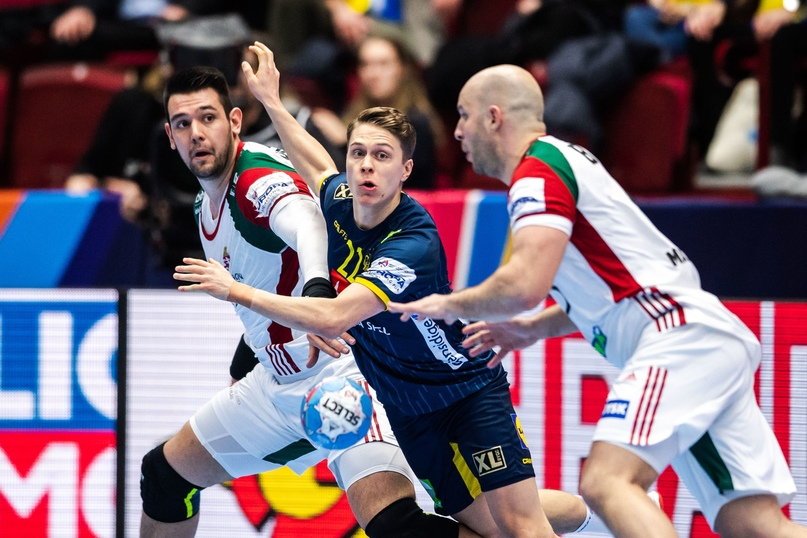 ЧЕ-2020. 50 процентов ответов: норвежцы в полуфинале, словенцы в олимпийском отборе, изображение №5