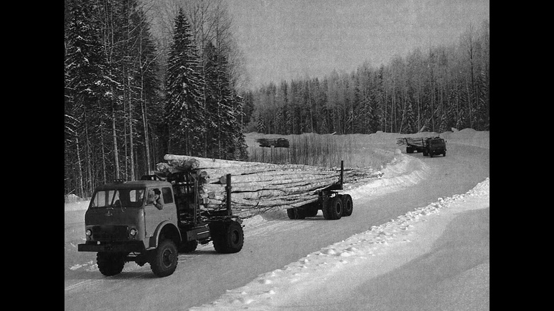 Лесовозы Вывозка леса в хлыстах Вытегорский район