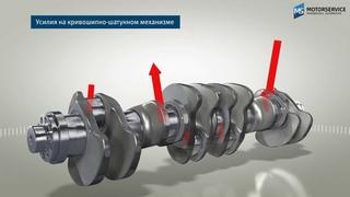 Строение и функция коленчатого вала (3D анимация) - Motorservice Group