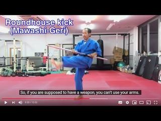 A comparison between Kudo and Karate 3 : The kicks (has 11 language subtitles)