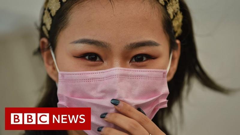 Coronavirus World must prepare for pandemic says WHO BBC News