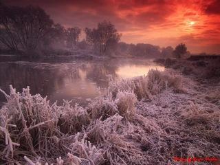 Winter by Sasha Vedula