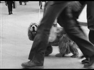 Otar Iosseliani - 7 pièces pour le cinéma noir et blanc (1982) / Отар Иоселиани - 7 пьес для черно-белого кино (1982)