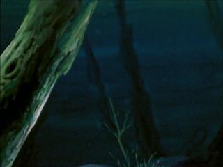 afragola-city - 025 - S4MPEI - Il Pesce Fantasma