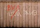 Личный фотоальбом Ромы Грищука
