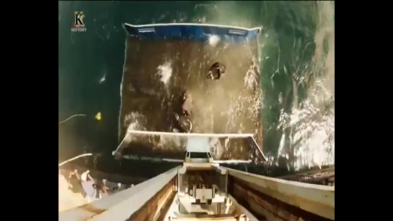Акульи пастухи. Бухта Свирепых акул (2-я серия) 2012
