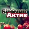 Типография «БиомикАктив». Печать в Воронеже