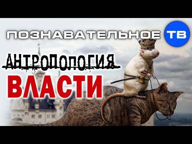 Антропология власти Познавательное ТВ Олег Чагин