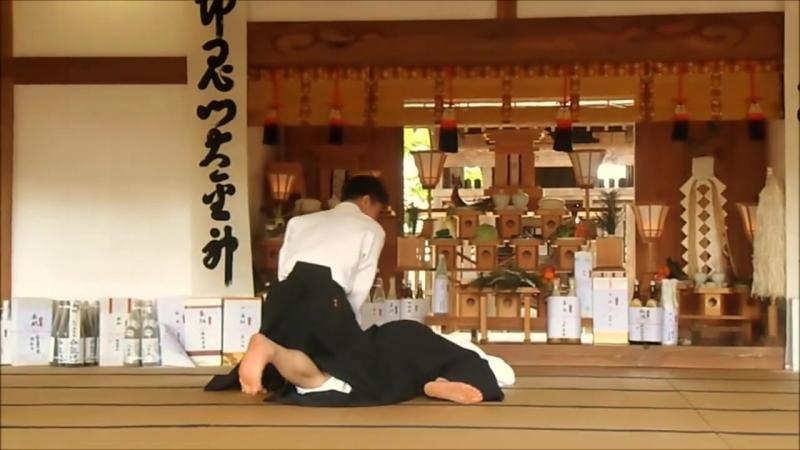 Aikido Ueshiba Mitsuteru Waka Sensei 2016