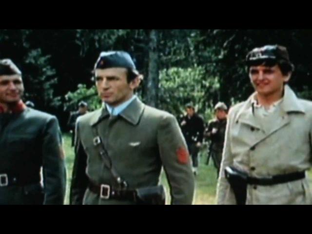 Manu Chao Bella Ciao ft Partizanska Eskadrila 1979 tribute