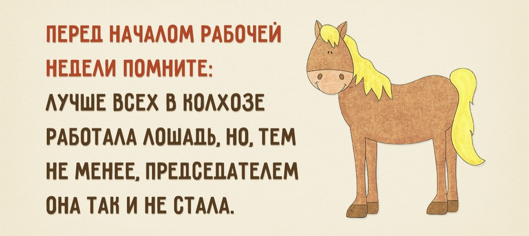 Картинки про рабочую неделю лошади, хорошим