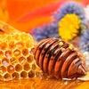 Мёд Кавказа