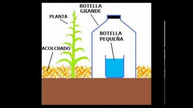 Técnica de Riego Solar por Goteo 1 Litro de Agua por Mes para una planta