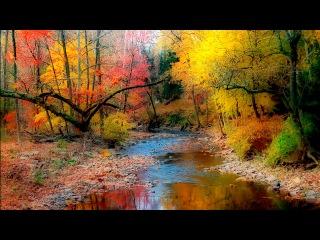 Rain and Native American Flute 2 - Shamanic Dream