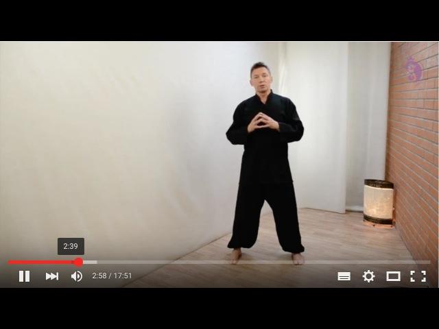 3 движения Тайцзи тай чи и Цигун для снятия боли в позвоночнике